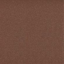 Premier-028-Brownie