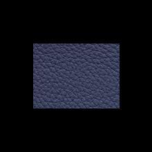Xtreme-59138