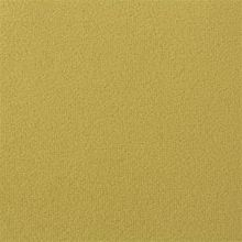 Ducale FR 0671-25 Corn