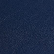 Neptune-Caleri 13