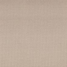 Macho-071-Birch