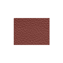 Xtreme-39114