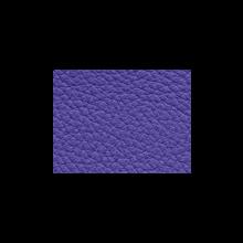 Xtreme-59120