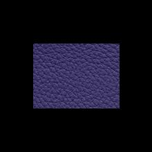 Xtreme-59170