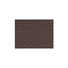 Xtreme-49115