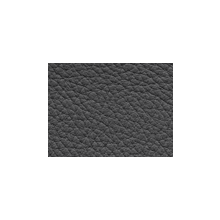 Xtreme-79164