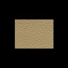 Xtreme-79173