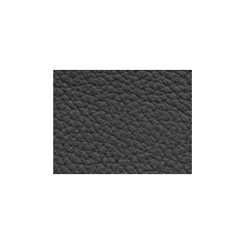 Xtreme-99123